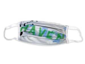 Safe Haven 2010 1